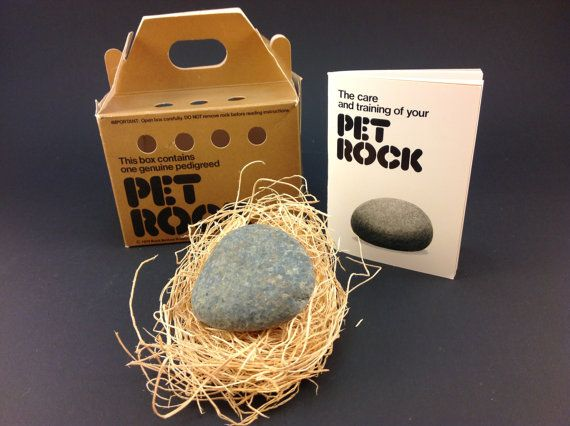 Pet Rock. Just a rock in a box.